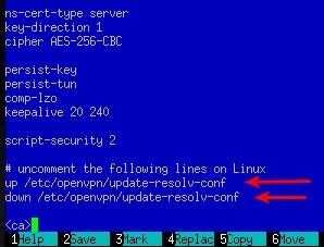 OpenVPN configuration file on Linux